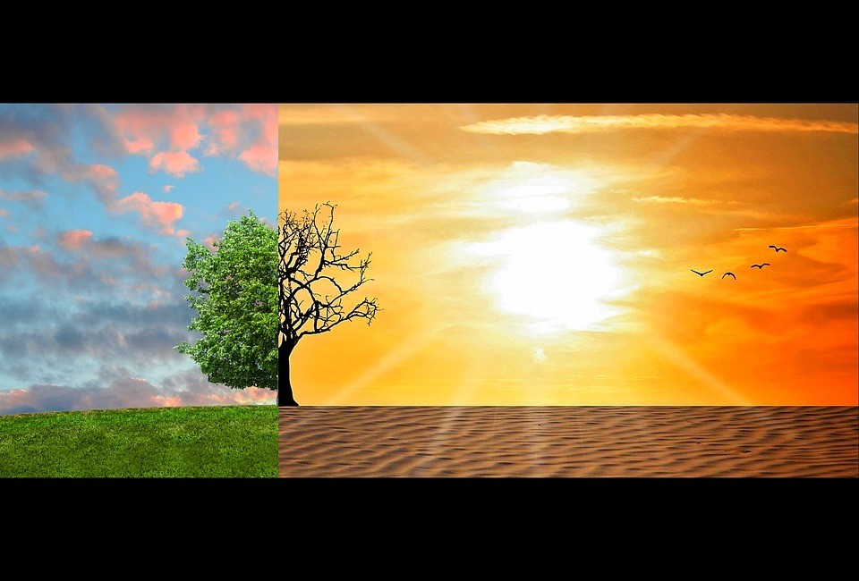 Global warming or climate change: An appraisal. Friday 1st November